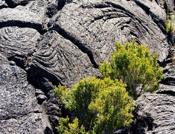lava-flow-422149_1920