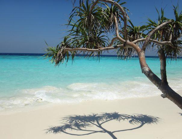 maldives-1650074_1920