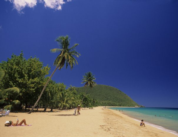 GuadeloupeBasse TerrePlage de Grande Anse à Deshaie
